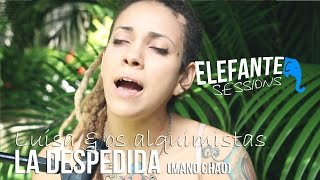 ELEFANTE SESSIONS | Luisa & os alquimistas - La Despedida (Manu Chao)