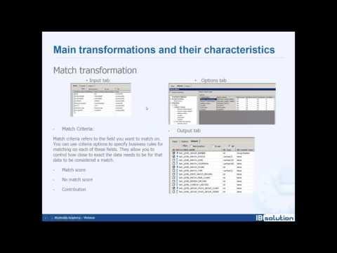 BO - Data Services & Information Steward - Level 3 - YouTube