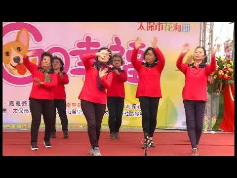 2018太保市花海節-開幕式4