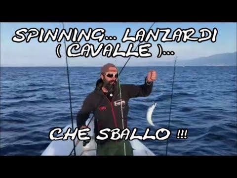 La pesca nellinverno di video per guardare un crucian