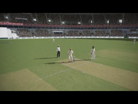 Ashes Cricket Next level Wicket