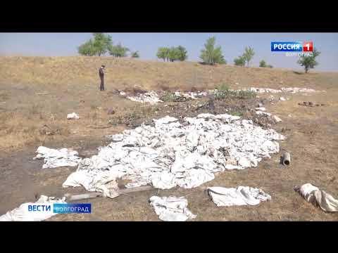 Управлением Россельхознадзора выявлены незаконные свалки отходов производства и потребления на сельхозугодьях Волгоградской области
