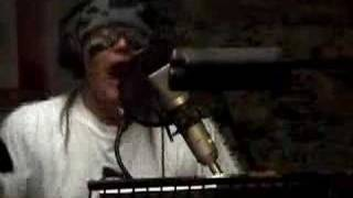 Adam Ant SAVE THE GORILLA w/ lyrics