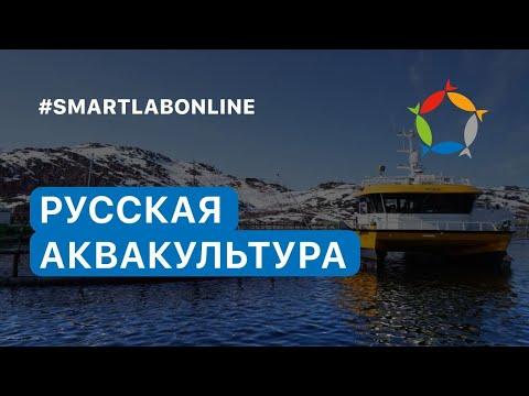 , title : 'Русская аквакультура: самое подробное интервью с директором Ильей Сосновым