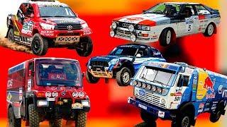 Самые популярные легендарные раллийные автомобили. Какие машины участвуют в ралли Дакар