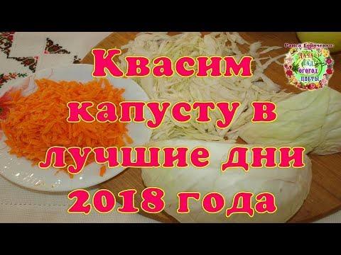 Квасим капусту в лучшие дни 2018 года