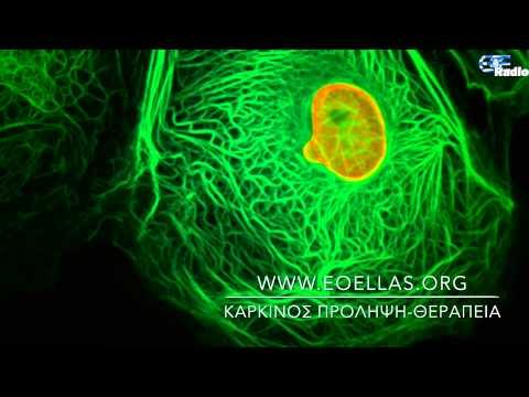 Βίντεο οργασμό αρσενικό προστάτη