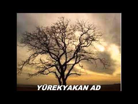 Yusufeli Yöresi Türküleri Gönül Demedim Mi Sana şarkı Sözleri Ile