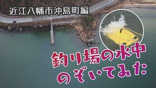 釣り場の水中のぞいてみた:近江八幡市沖島町編