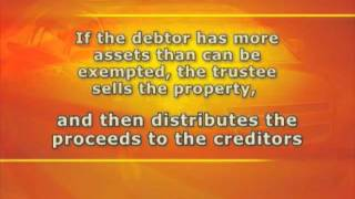 Seattle Bankruptcy Attorney | Types of Bankruptcy