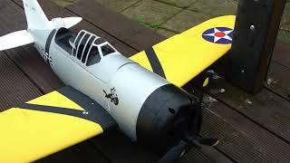 Buffalo - Cockpit cam FPV - 20 August 2021