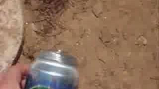 Coke and Sprite Explosion