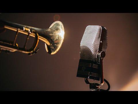 Com'è fatto il microfono a nastro AEA R44C