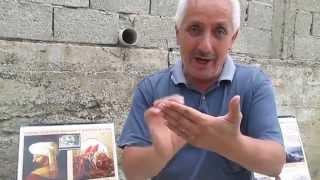 Tarihçi Cezmi Yurtsever Turnadağ Savaşı
