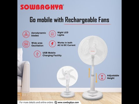 Pedestal Rechargeable Fan 16 inch
