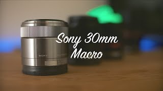 Sony SEL30M35 Macro // Another Comprehensive Review