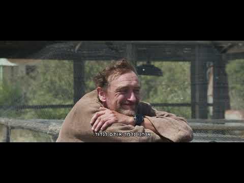 הרפתקאות טום אווזי הבר