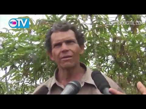 Don Paulino Leytón aprovecha facilidades del gobierno para producir con calidad