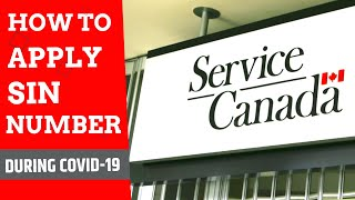 HOW TO APPLY FOR SIN NUMBER IN CANADA | JANUARY INTAKE | ONLINE CLASS | INTERNATIONAL STUDENT