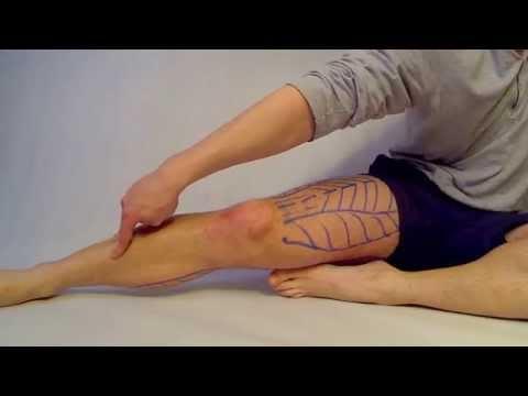 Ćwiczenia dla wewnętrznych mięśni ud na zdjęciach