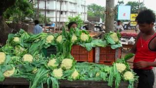 Cauliflower Seller in Bhubaneswar