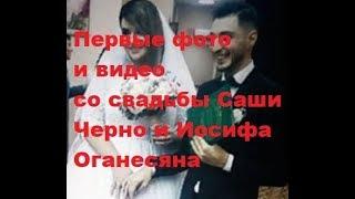 Первые фото и видео со свадьбы Саши Черно и Иосифа Оганесяна. ДОМ-2 новости