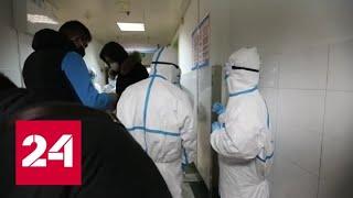 Новый коронавирус постепенно завоевывает мир - Россия 24