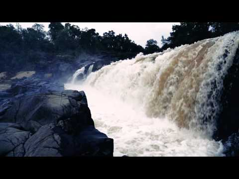 Escape into the wild - Bandhavgarh Natio