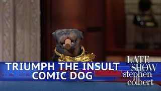 Triumph The Insult Comic Dog Poops On Voters