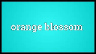 Orange blossom Meaning