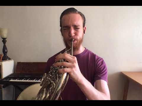 Who doesn't love Star Wars? The French horn gets the best part.... (Recorded in my home.)