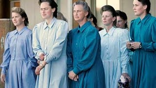 Mormon Polygamy:  By the Numbers