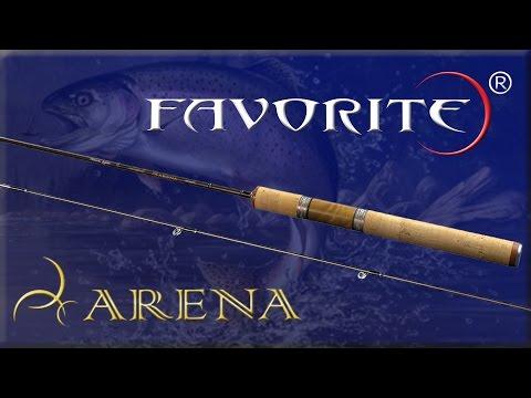 Обзор Favorite Arena