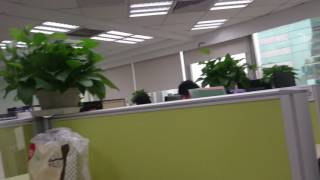 Normal day in IDP CHINA Shanghai Office