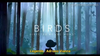 Imagine Dragons   Birds (Clipe Legendado)
