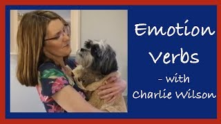 How do we use Emotion Verbs?