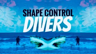 Video Divers