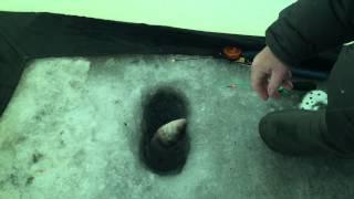 Зимняя рыбалка в серпухове
