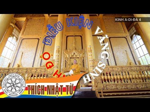 Kinh A-di-đà 4: Điều kiện vãng sinh Tịnh Độ (15/12/2005)
