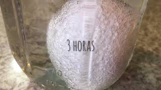 Bouncy eggs o huevos saltarines | DIY