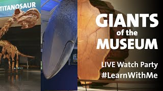Giants of the American Museum of Natural History Tour