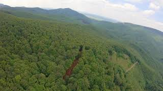 FPV mid-range drone views from Carpathians forest / fpv drone forest video