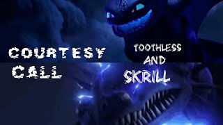 Rtte | Toothless And Skrill Tribute