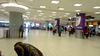 At Arrival Terminal 3 Pearson Airport (Toronto)!