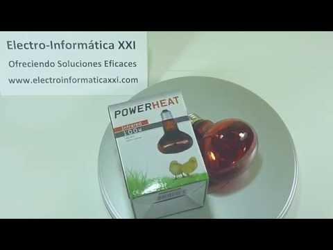 Lámpara Infrarroja Bombilla De Calor Infrarrojos 60W – 100W R80 Incubadoras, Nacedoras, Terrarios