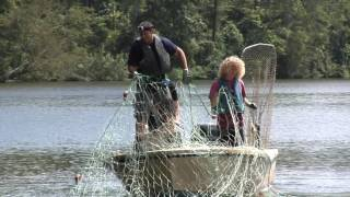 The Search for Sturgeon: A Prehistoric and Endangered Fish