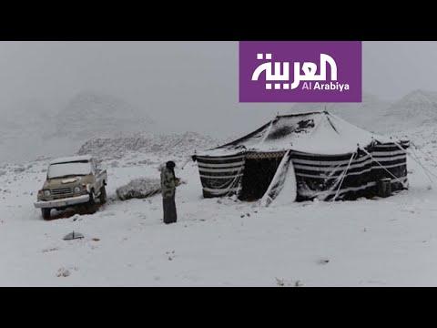 العرب اليوم - شاهد: تساقط الثلوج على مناطق شمال السعودية