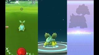 Grotle  - (Pokémon) - Catching shiny Turtwig, evolving into shiny Grotle and Torterra