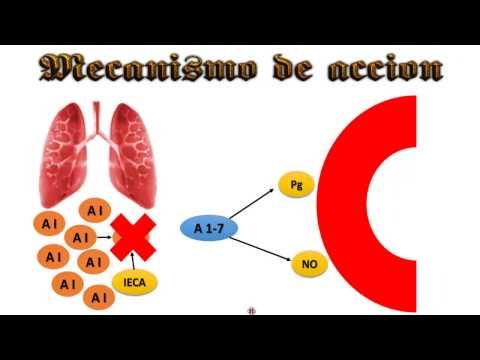 Presionando estado en la hipertensión esencial