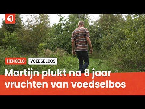 Martijn Aalbrecht plukt vruchten van een van Twentes eerste voedselbossen